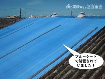和泉市の倉庫の屋根をブルーシートで処置されていました