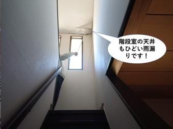 泉大津市の階段室の天井もひどい雨漏りです