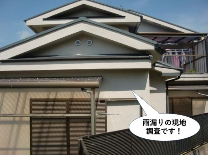 和泉市の雨漏りの現地調査です