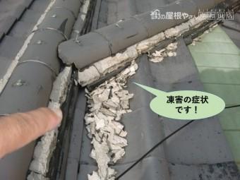 岸和田市の屋根の瓦の凍害の症状です!