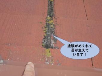 岸和田市の瓦の塗膜がめくれて苔が生えています