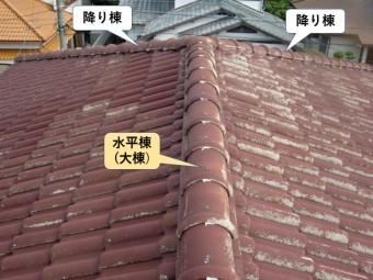 熊取町N様邸の降り棟と水平棟