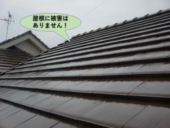 岸和田市の屋根に被害はありません!