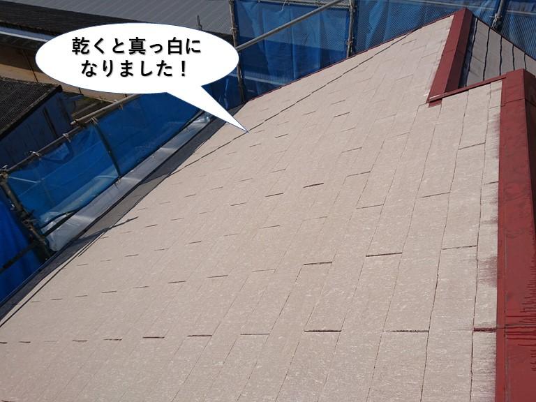 阪南市の屋根洗浄後乾くと真っ白になりました!