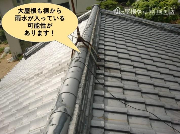 岸和田市の大屋根も棟から雨水が入っている可能性があります!