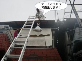 和泉市の屋根をシートと土のうで養生します