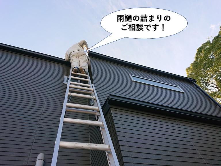 岸和田市多治米町の雨樋の詰まりを解消しボタボタ音も解消されたお客様の声