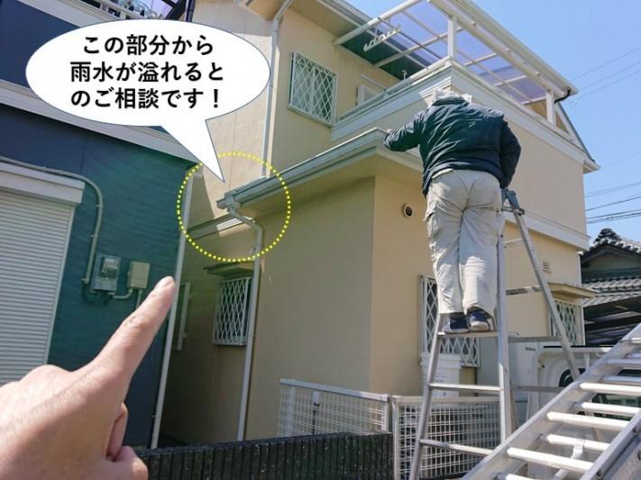 和泉市の雨樋の詰まりのご相談