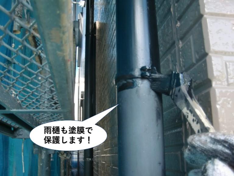 忠岡町の雨樋も塗膜で保護します
