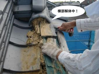 岸和田市の棟部解体中
