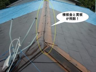岸和田市の屋根の棟板金と貫板が飛散