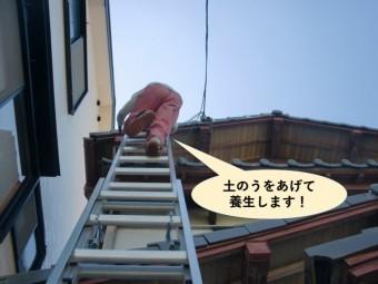 和泉市で土のうをあげて養生します