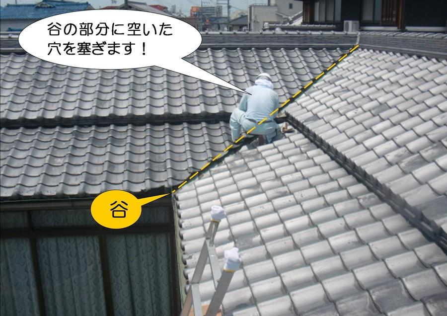 雨漏りの岸和田市の屋根簡易修理