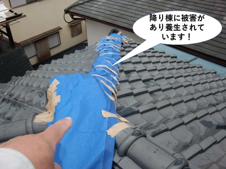 泉大津市の屋根に降り棟に被害があり養生されています