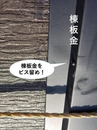 岸和田市の棟板金をビス留め