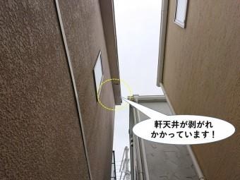 泉大津市の軒天井が剥がれかかっています