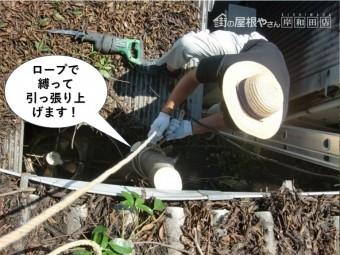 岸和田市の木の幹をロープで縛って引っ張り上げます