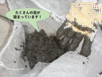 泉大津市の雨樋の中にたくさんの泥が詰まっています