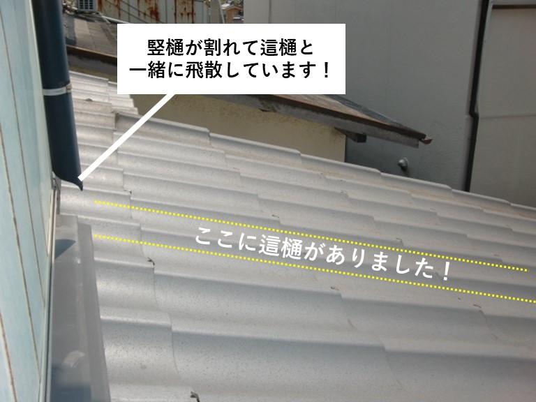 岸和田市の竪樋が割れて這樋も飛散