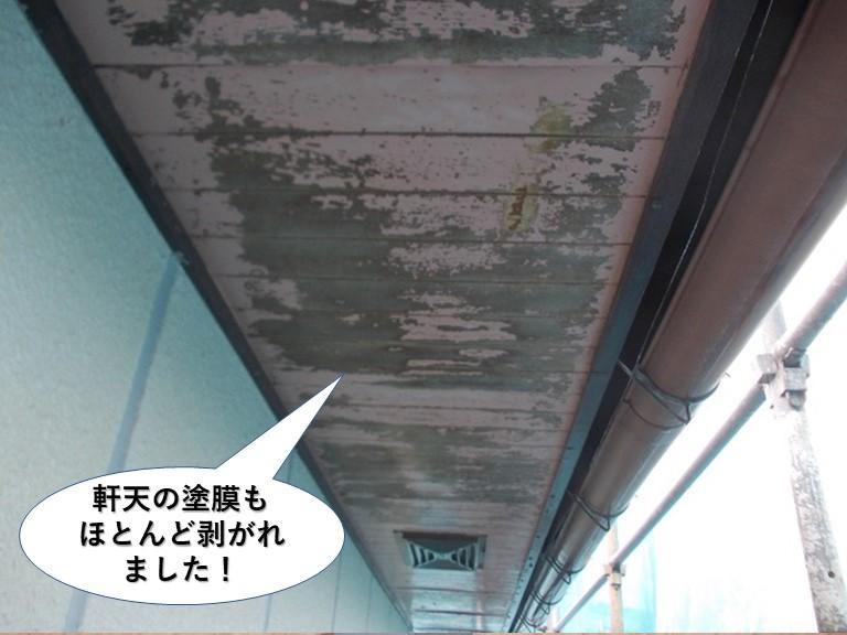 岸和田市の軒天の塗膜もほとんど剥がれました