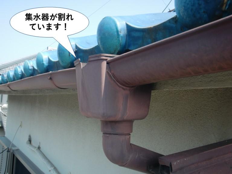 岸和田市の集水器が割れています