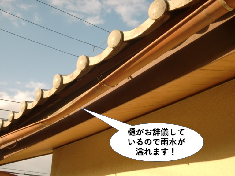和泉市の樋がお辞儀しています