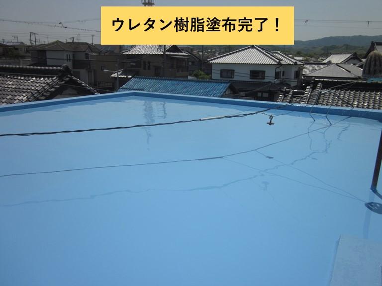 和泉市の陸屋根にウレタン樹脂塗布完了