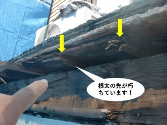 岸和田市のベランダの根太の先が朽ちています