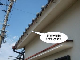 泉佐野市の軒樋が飛散しています