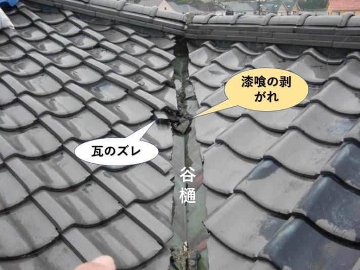 泉大津市の谷樋の被害