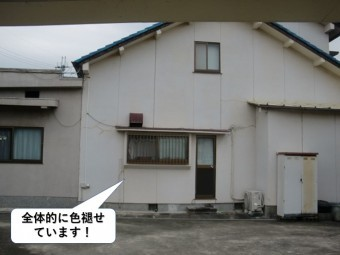 和泉市の外壁が全体的に色褪せています