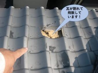 泉大津市の下屋の瓦が割れて飛散しています!