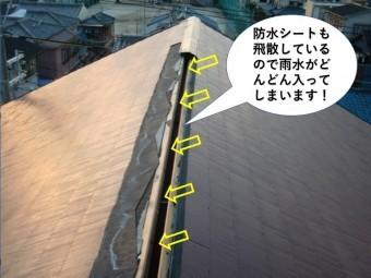 岸和田市の防水シートが飛散