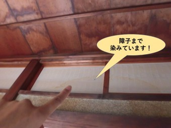 岸和田市西之内町の縁側の障子まで染みています!