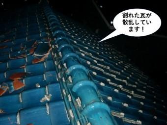 岸和田市で割れた瓦が散乱しています