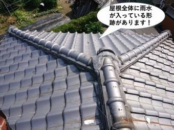 泉佐野市の屋根全体に雨水が入っている形跡があります