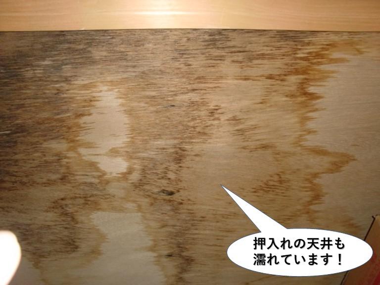 貝塚市の押入れの天井も濡れています