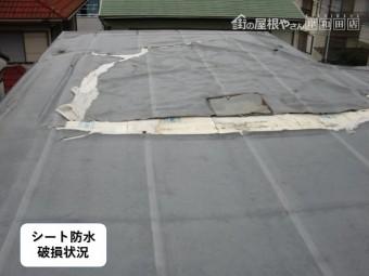 貝塚市の陸屋根のシート防水破損状況