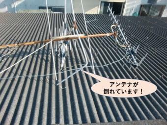 岸和田市の倉庫の屋根のアンテナが倒れています!