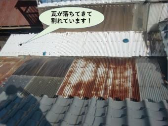 岸和田市の波板の屋根に瓦が落ちてきて割れています
