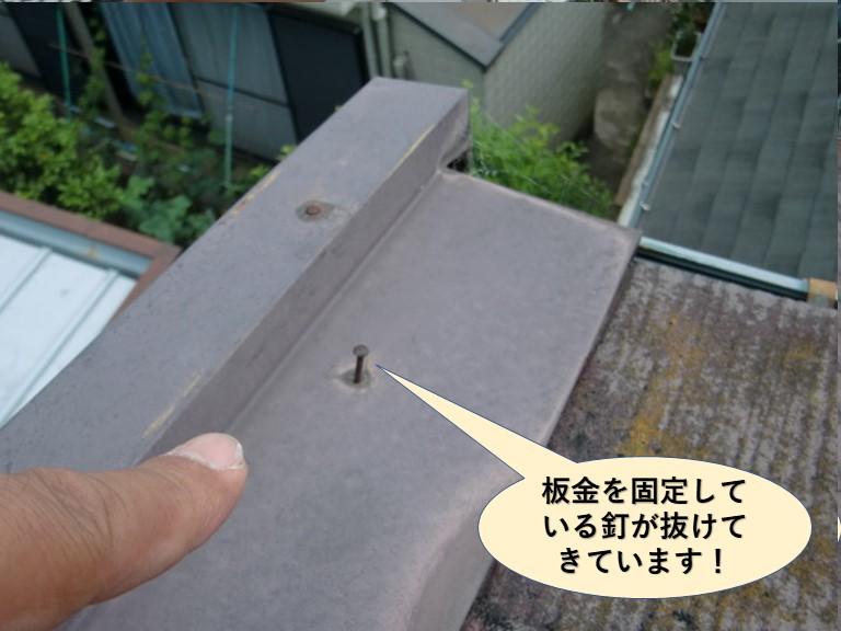泉大津市の板金を固定している釘が抜けてきています