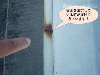 岸和田市の板金を固定している釘が抜けてきています