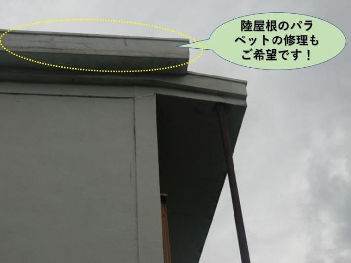泉佐野市の陸屋根のパラペットの修理もご希望です