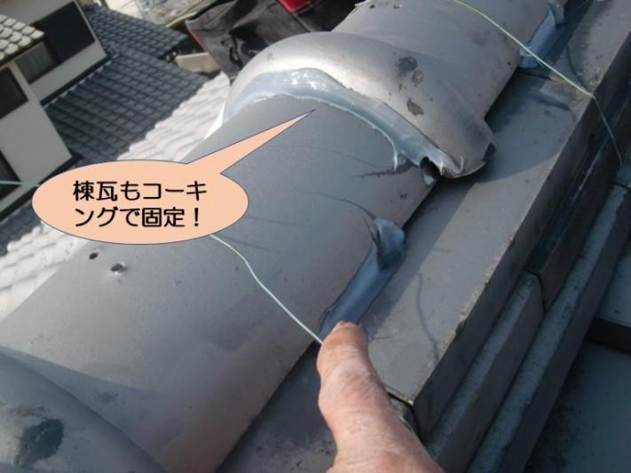 岸和田市の棟瓦もコーキングで固定