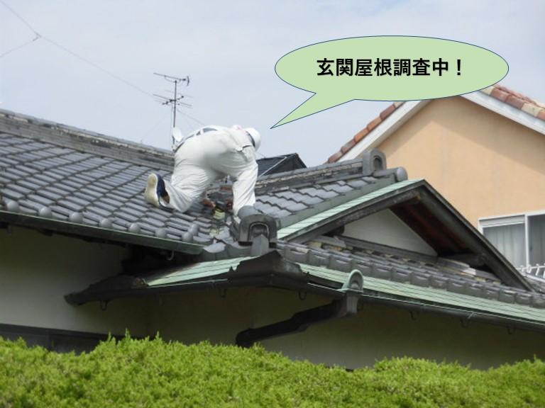 岸和田市の玄関屋根調査中