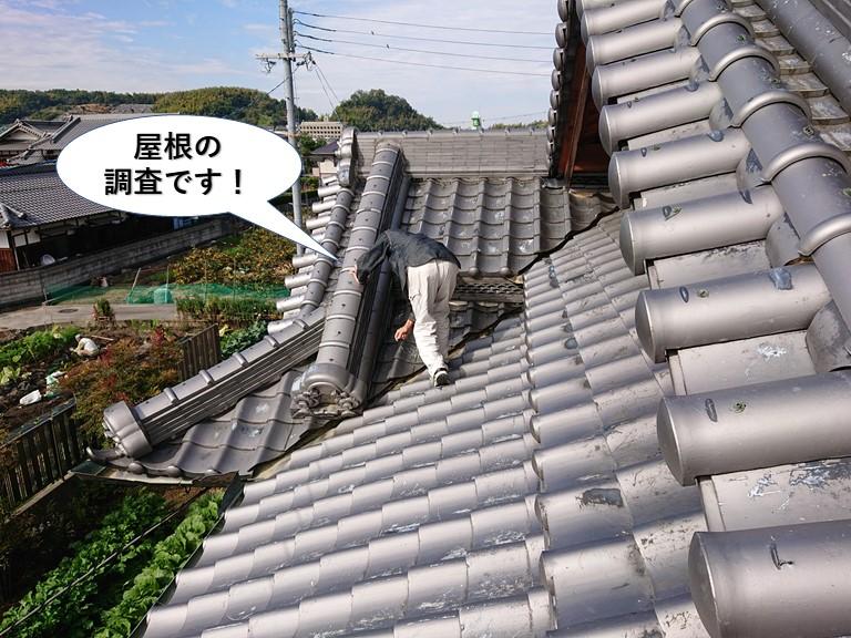 阪南市の屋根の調査です