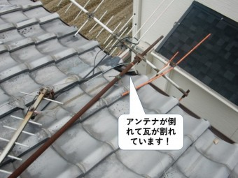 岸和田市のテレビアンテナが倒れて瓦が割れています