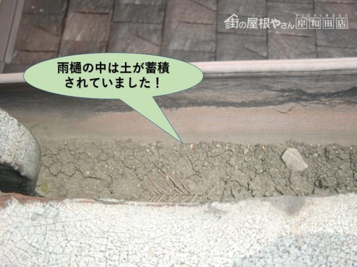 泉大津市の雨樋の中は土が蓄積!