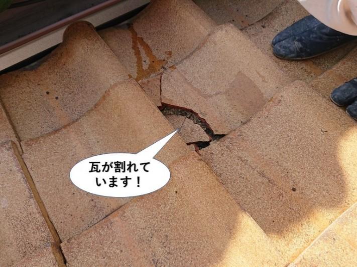 熊取町の屋根の瓦が割れています