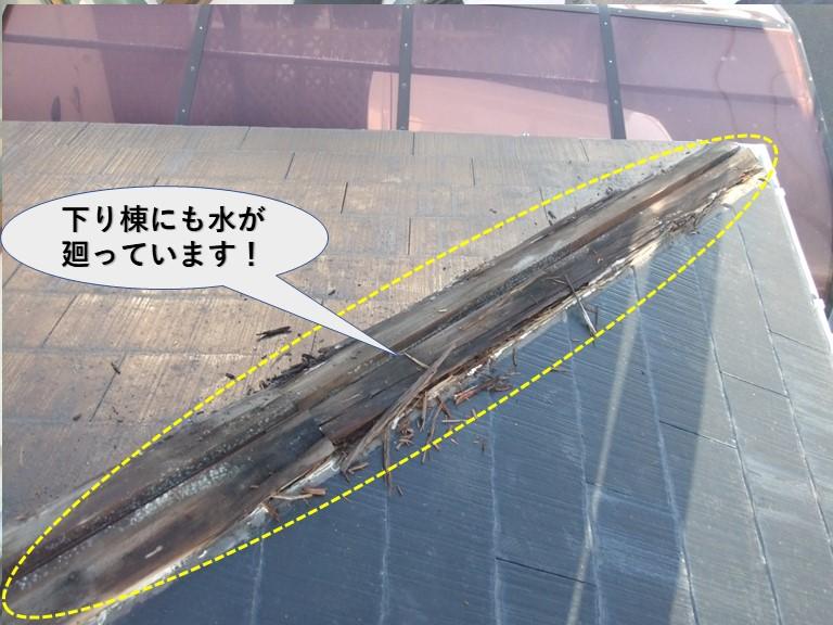 岸和田市の下屋の下り棟にも水が廻っています